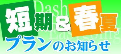 ダッシュプラン、春夏プラン(富山)